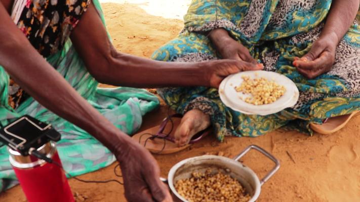مسلوق الذرة والفاصوليا وجبة مزارعي الصفة لمواجهة شبح المجاعة والغلاء